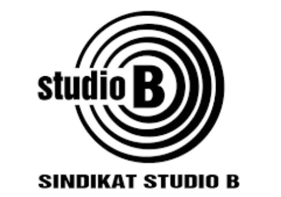 Televizija Studio B više nije što je bila
