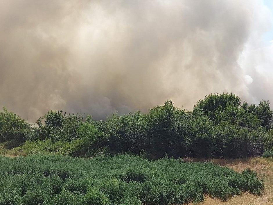 Požar na deponiji u Požarevcu
